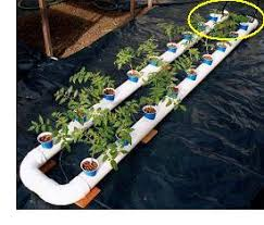 home made hydroponics systems