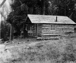 homestead cabins