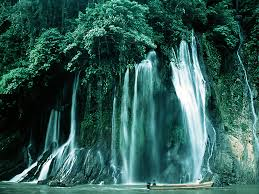آبشار طبیعی جنگلی