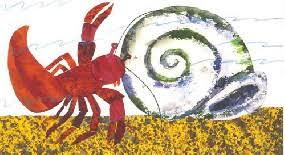 eric carle a house for hermit crab