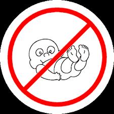 no baby