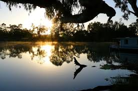 pictures of the murray river