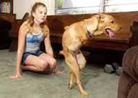 handicapped animals