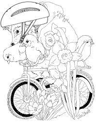 bike spring