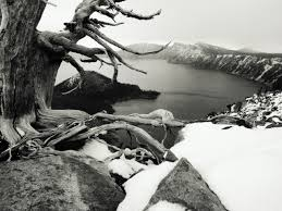 black and white scenery