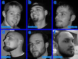 modern beard styles