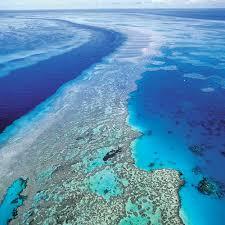 barrier reef photo