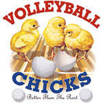 funny volleyball sayings
