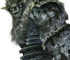 http://t0.gstatic.com/images?q=tbn:QXb4L5j0sVKR_M:http://images1.wikia.nocookie.net/__cb20100907214511/shadowofthecolossus/images/5/57/Barba-Good_Headshot!.jpg&t=1