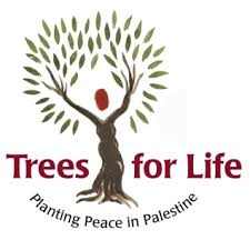 replant trees