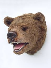 bear head mount