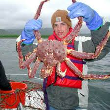 alaska crab