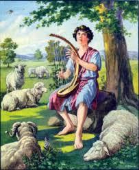 shepherd david