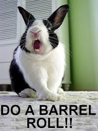 DO A BARREL ROLL.