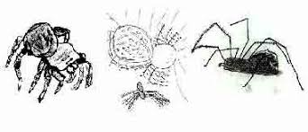 drawings of spiders