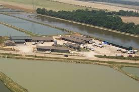 fish farming ponds