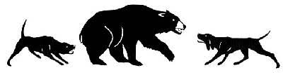 bear hunting decals