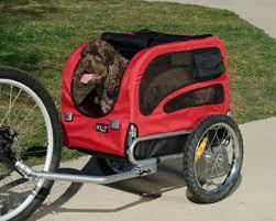 bicycle dog