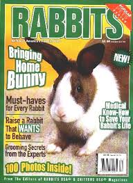 rabbit magazine