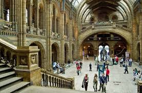 british natural museum