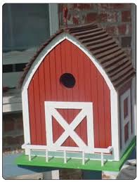 large bird house