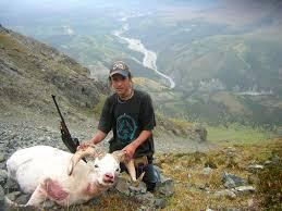 sheep hunt
