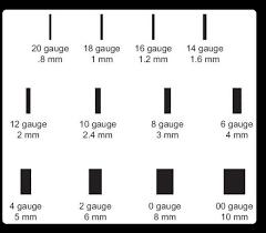 gauges for ear