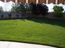 big backyards