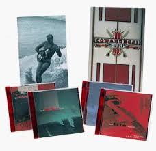cowabunga the surf box