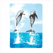 dolphin comforter