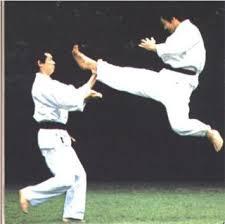 karate japanese