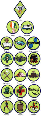 insignias scouts