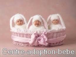 adoption bebe
