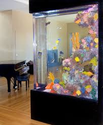 home saltwater aquariums