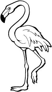 flamingo coloring sheets
