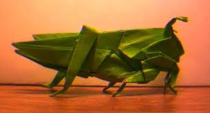 grasshopper model