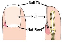 fingernail disorder