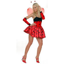 lady bug fancy dress
