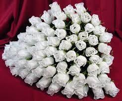 http://t0.gstatic.com/images?q=tbn:Rt3cw6UD7efT-M:http://i265.photobucket.com/albums/ii208/aianfe/roses.jpg