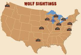 great wolf lodge map