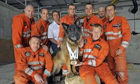 firefighting search and rescue