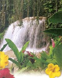 enchanted gardens ocho rios