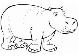 dibujos animales salvajes