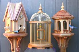 bird house projects