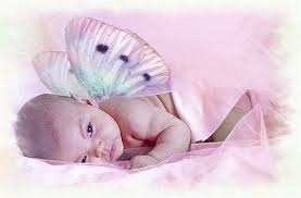 baby fairy pictures