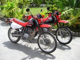 motor bikes honda