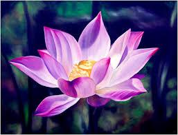 lotus flower paint