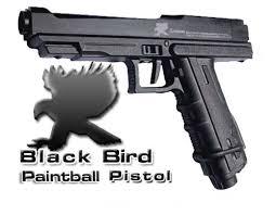black bird paintball pistol