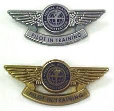 pilot pin