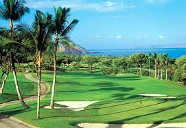 golf tropical